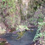 Earthcache Hike to Dripping Springs