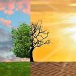 Science, Technology, and Environment:  Climate Change:  In CD 45, Who Cares?