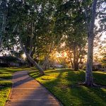 Irvine Ranked 6th Best in the Nation for Access to Parks