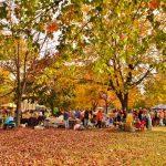 Celebrate Cultures in Nature: Mid-Autumn Festival