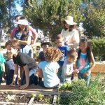 Garden Workshop: Backyard Composting