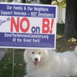 "Voter Revolt! ""No on B!"""