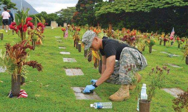 City Council Votes Against Immediately Beginning Construction of the Veterans Cemetery in the Great Park